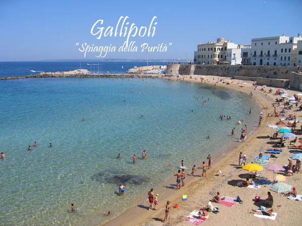 Appartamenti Gallipoli Agosto